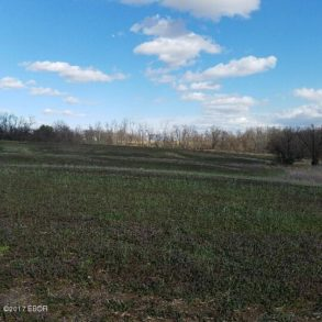 34.70 Acres-Villa Ridge